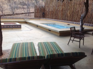 Executive Suite, private rear patio with plunge pool
