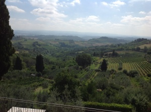 View From My Balcony in Siena