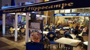 Dining Solo at Hippocampe