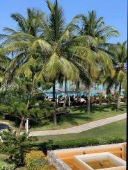 Beautiful Grounds at Melia Hotel