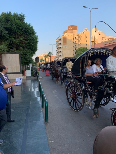 Horse and Carriage Rides in Luxor